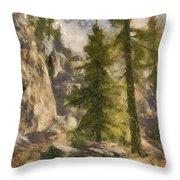 Spruce Throw Pillow
