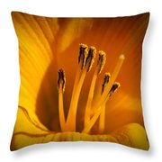 Stamens Throw Pillow