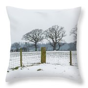 Standing In The Snow Throw Pillow