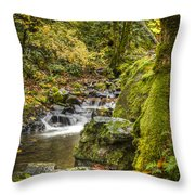 Starvation Creek Throw Pillow