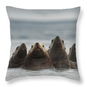 Stellers Sea Lion Eumetopias Jubatus Throw Pillow by Michael Quinton