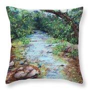 Stephens State Park Throw Pillow