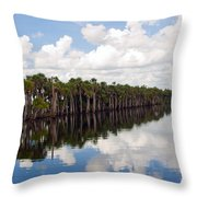 Stick Marsh In Fellsmere Florida Throw Pillow