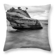 Stormy Bonsai Rock Throw Pillow