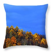 Stormy Sky Last Fall Color Throw Pillow by Thomas R Fletcher