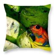Strawberry Poison Dart Frog Throw Pillow