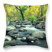 Stream In Cottonwood Canyon, Sedona Throw Pillow