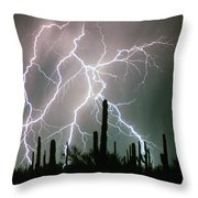 Striking Photography Throw Pillow
