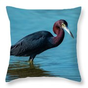 Strolling On A Bright Morning Throw Pillow