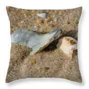 Stuck In The Sand Throw Pillow