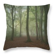 Stunning Colorful Moody Vibrant Autumn Fall Foggy Forest Landsca Throw Pillow