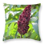 Sumac Fruit Throw Pillow