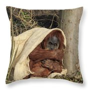 Sumatran Orangutang - Throw Pillow
