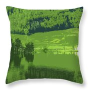 Summer In Norway Throw Pillow