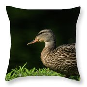 Summer Nature Throw Pillow