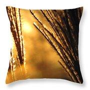 Sun Grass Wind Throw Pillow