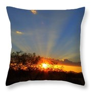 Sun Rays At Sunset With Tree And Saguaro Throw Pillow