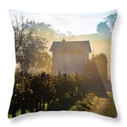 Sun Rays In Morning Fog Vineyard View Throw Pillow