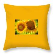 Sun Sisters Throw Pillow