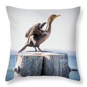 Sunbathing Cormorant Throw Pillow