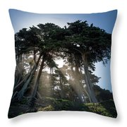 Sunbeams From Large Pine Or Fir Trees On Coast Of San Francisco  Throw Pillow