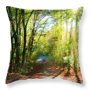 Sunny Autumn Path Throw Pillow