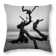 Sunrise On Driftwood In Black And White Throw Pillow
