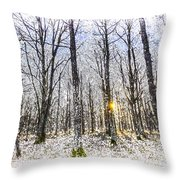Sunrise Snow Forest Art Throw Pillow