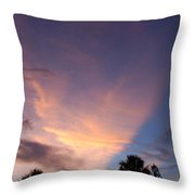 Sunset At Pine Tree Throw Pillow