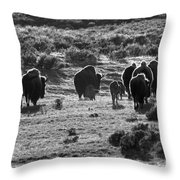 Sunset Bison Stroll Black And White Throw Pillow