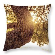 Sunset On A Tree Throw Pillow