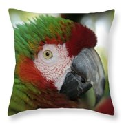 Surprised By Joy Throw Pillow