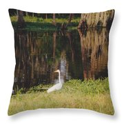 Swamp Bird Throw Pillow