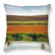 Swamp With Birds Landscape Autumn Season Throw Pillow