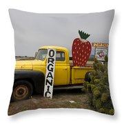 Swanton Berry Farm Davenport Throw Pillow
