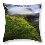 Sweet Creek Oregon 11 Throw Pillow