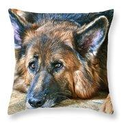 Sweet Falco Throw Pillow