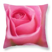 Sweet Rosiness Throw Pillow