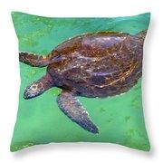 Swimming Along Throw Pillow