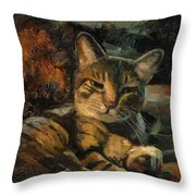 Tabby Nap Throw Pillow