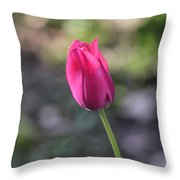 Take A Bow Throw Pillow