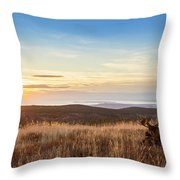 Taking In The Sunset Throw Pillow