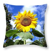 Tall And Sunny Throw Pillow