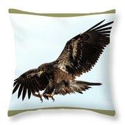 Talons First Throw Pillow