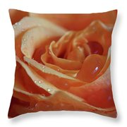 Tangy Throw Pillow by Tracy Hall