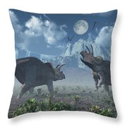 Territorial Confrontation Between Two Throw Pillow