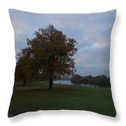 That Tree, 26th October, 2015 Throw Pillow
