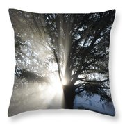 The Abode Of Gladness Throw Pillow