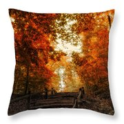 The Approach Throw Pillow
