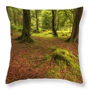 The Ardgartan Forest Throw Pillow